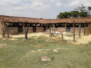 m.k._bangur_farm